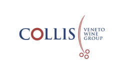 Collis Group - Cantine dei Colli Vicentini